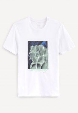 חולצת טי מודפס, צווארון עגול, 100% כותנה