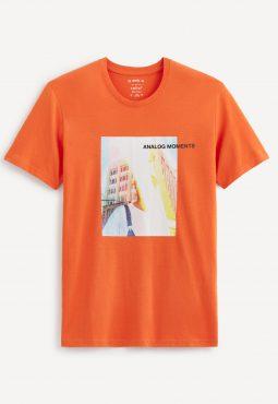 חולצת טי הדפס, צווארון עגול, 100% כותנה